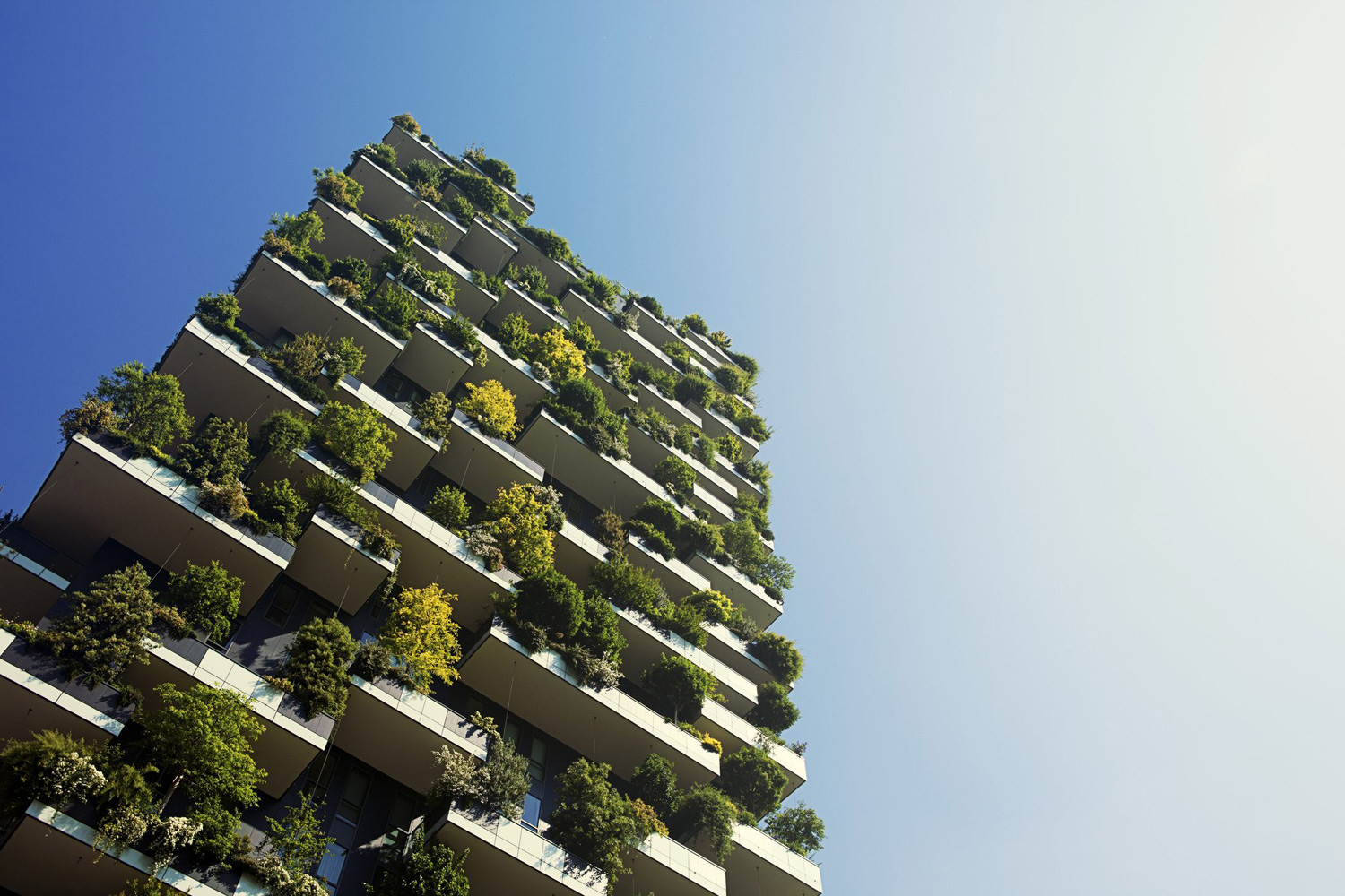 ecodesign-bosco-verticale
